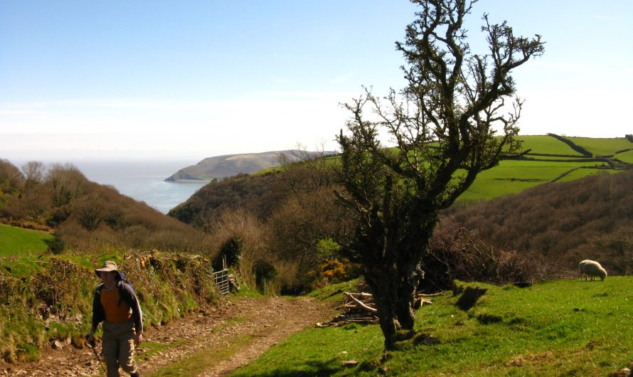 South West Coast Path: Porlock to Lynton