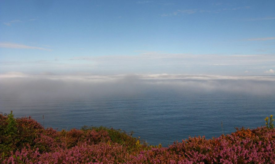 South West Coast Path: Perranporth to Portreath