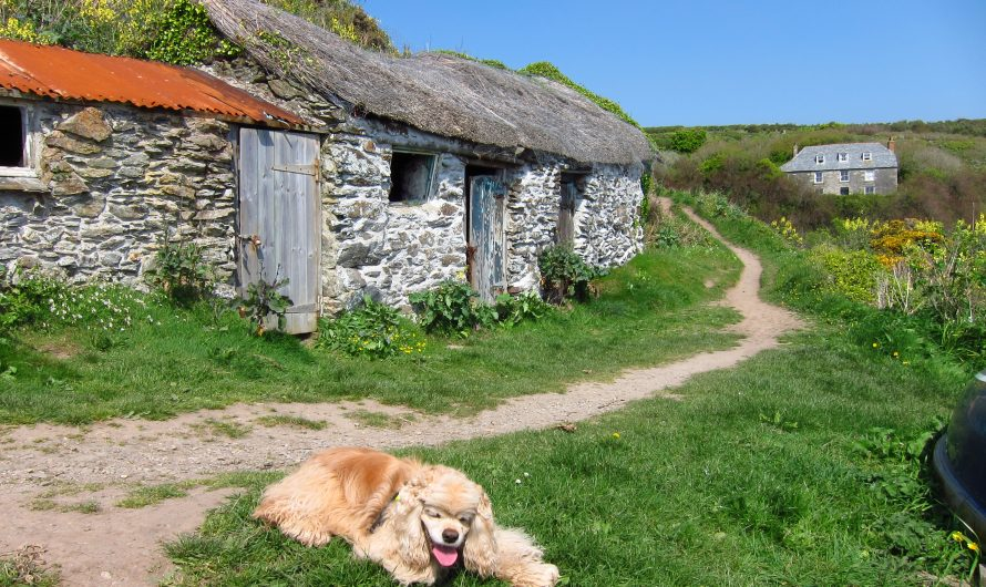 South West Coast Path: Penzance to Porthleven