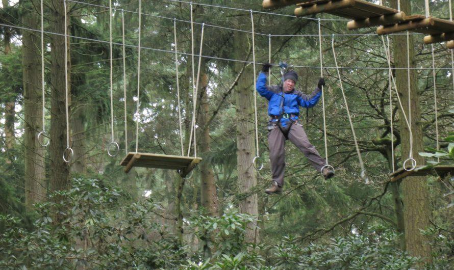 Go Ape, Thetford Forest