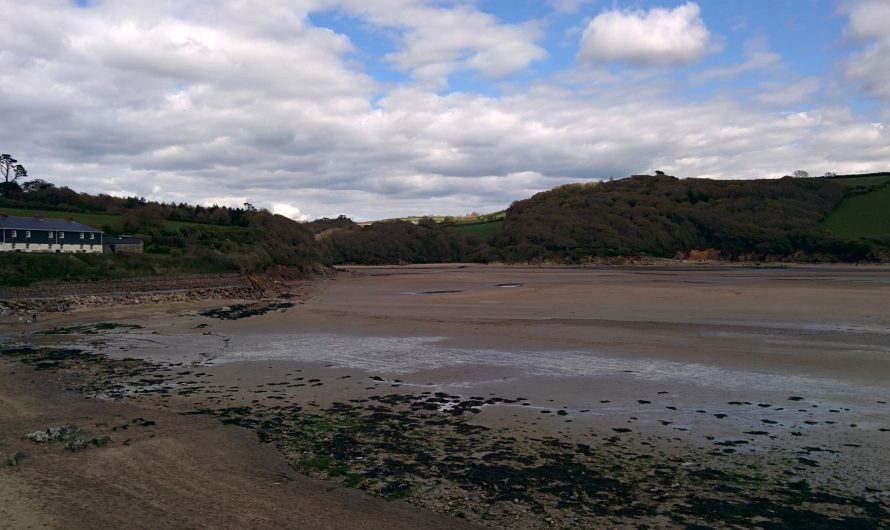 South West Coast Path: Wembury to Mothecombe