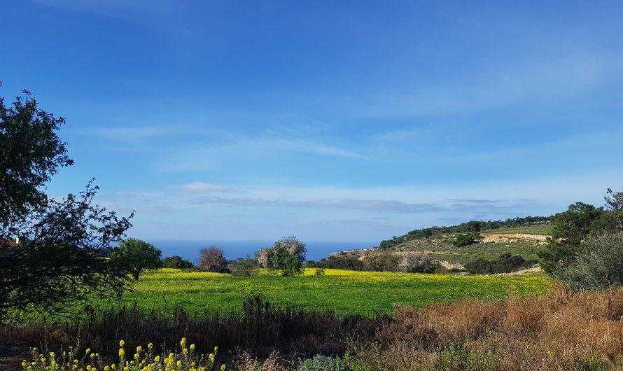 Cyprus long weekend including half-marathon